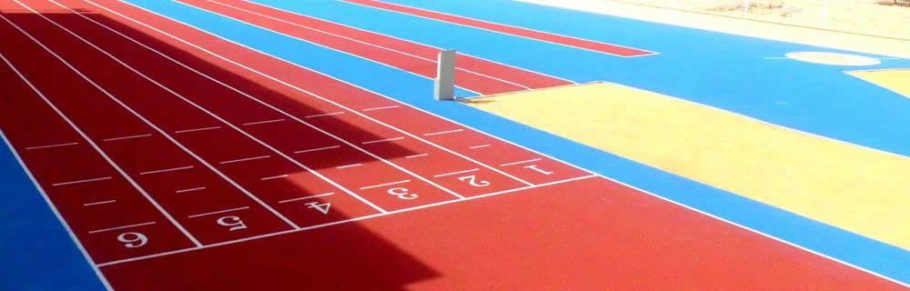 equipo deportivo trainerweb zone