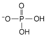 Fosfato1